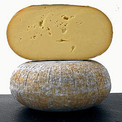 Wyfe Of Bath Organic Cheese (image 1)