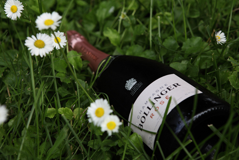 Buy Bollinger Rose here