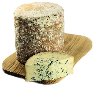 Colston Bassett Baby Blue Stilton Truckle on our Cheeseboard