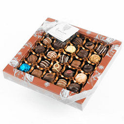Holdsworth Classic Assortment Chocolates 375g 25pc (image 1)