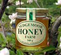 Sedgemoor Runny Honey 340g